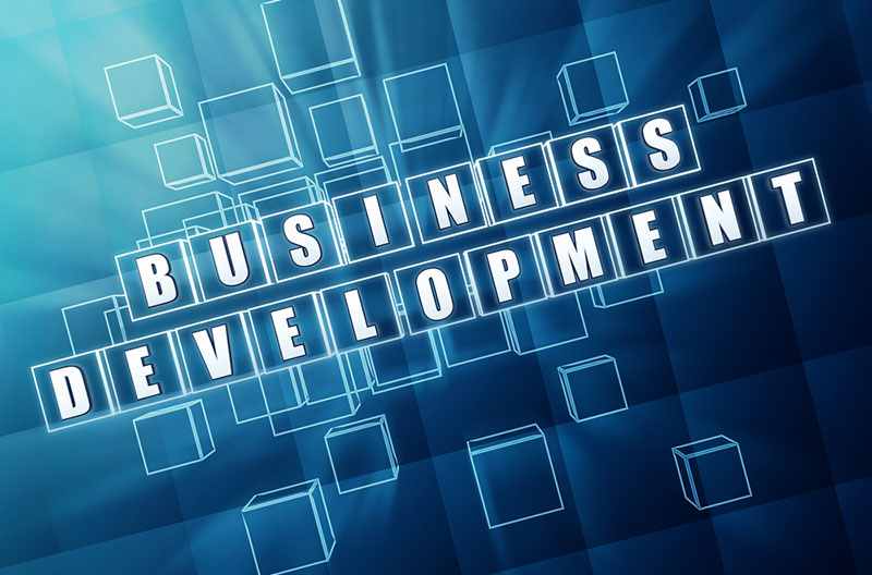 Developing a business
